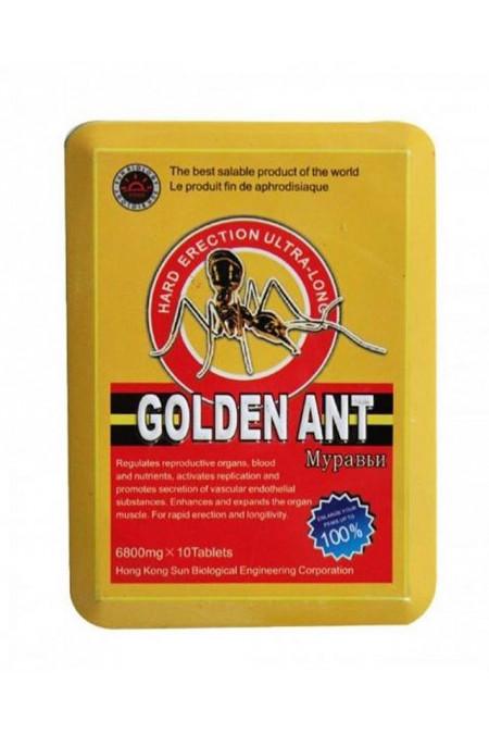 Golden Ant Муравей